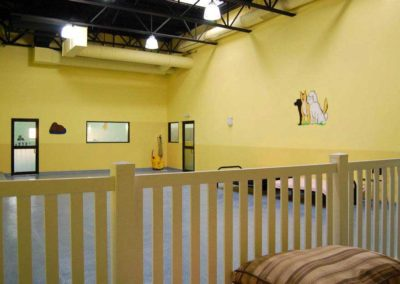 Yellow Playroom