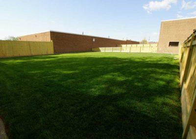 Grass Yard